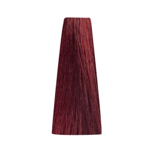 Bionic RED 6/6 Dark Blonde Red 100mll/Permanentní barvy/Červené