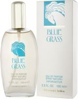 Elizabeth Arden Blue Grass