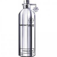 Montale Paris Ginger Musk Parfémovaná voda 100ml U